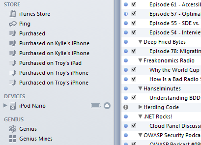 iPod Nano (finally) appears