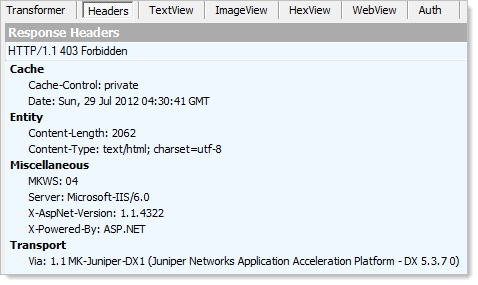 Response headers showing ASP.NET 1.1