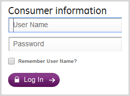 Go GE Capital's login form before entering credentials